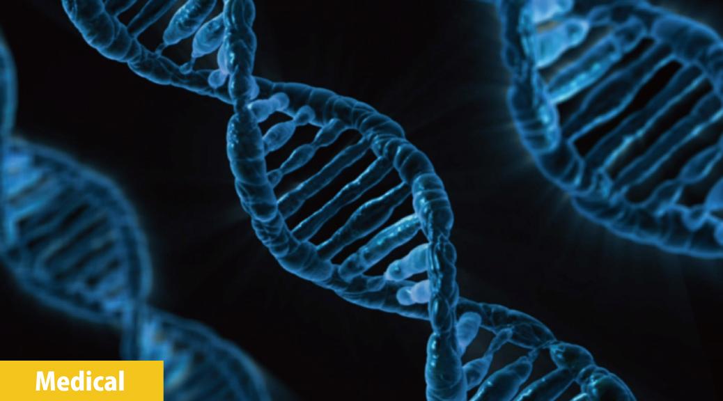 遺伝子にプログラムされた「老化」を止める!?