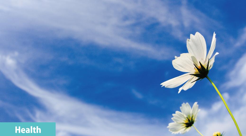 フローな風が吹く 〜人生を悔いなく生きるために〜